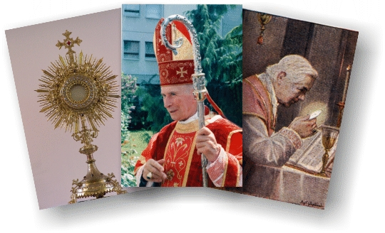 Welcome to SSPX-ThePriesthood.com